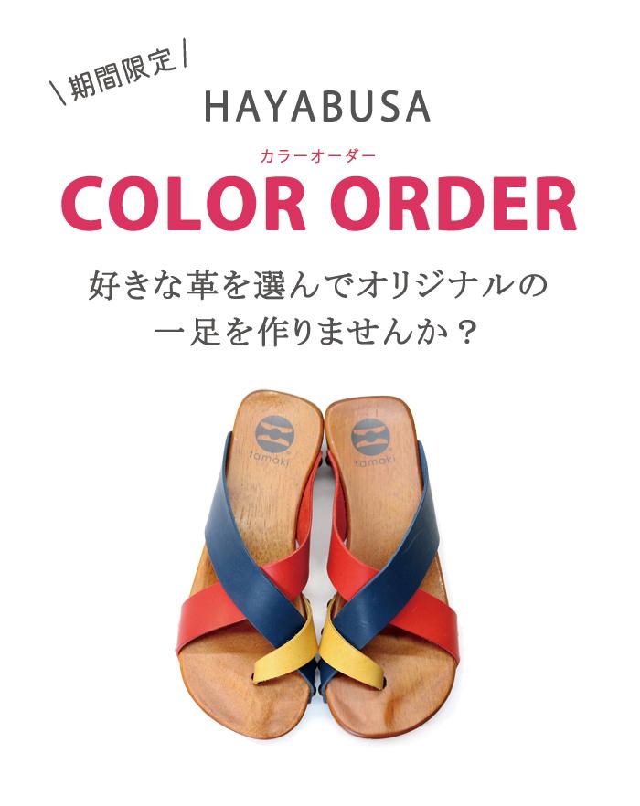 ハヤブサのカラーオーダー